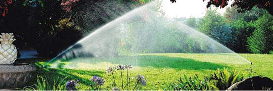 Bewässerung 1