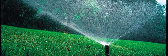 Bewässerung 2