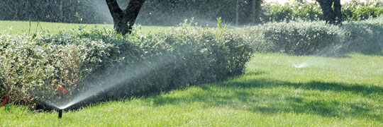 Bewässerung 4